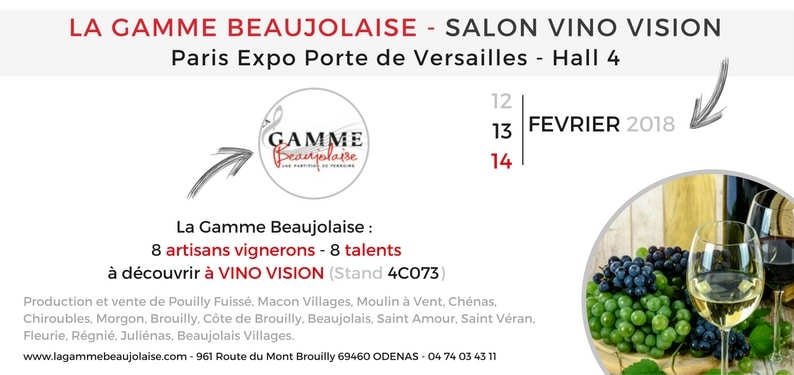 INVITATION SALON VINO VISION